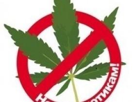 Памятка об ответственности за незаконное культивирование наркосодержащих растений