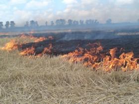 Памятка о запрете сжигания сухой травы.